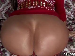 Colombian cougar three